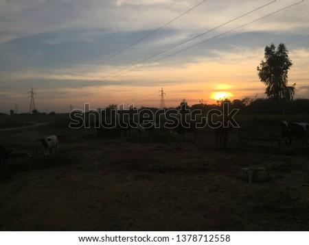 Beauty of fields rural areas  #1378712558