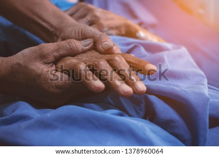 Old daughter's hand touches and holds an old woman's wrinkled hands. #1378960064