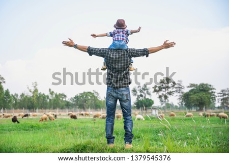 Family looking at sheep in field. Boy and young father having fun on livestock. Portrait of a man and boy with sheeps in the farm. #1379545376