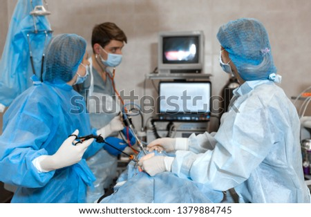 Vet doing the operation for sterilization. The cat on the operating table in a veterinary clinic. Cat in a veterinary surgery , the uterus and ovaries of a cat during surgery. #1379884745