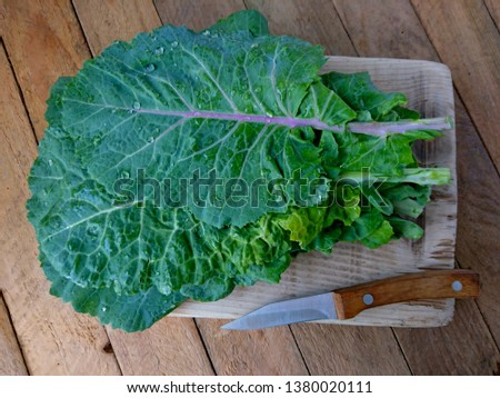 Kale cabbage leaf bunch. Tuscan or black kale on wood table. Winter cabbage leaf (italian kale or lacinato) cut for salad & soup. Organic cabbage leaf food. Ingredient in italian, turkish cuisine #1380020111
