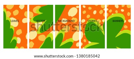 Social media stories banners set, story, floral templates for cover, flyer, brochure, vector bright backgrounds collection. #1380185042