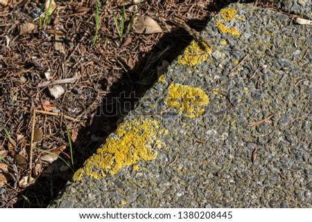 textured land marks #1380208445
