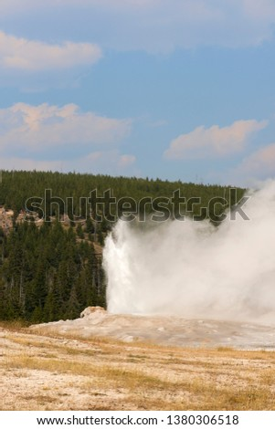 old faithful Geyser in old faithful Basin in Yellowstone National Park in Wyoming #1380306518