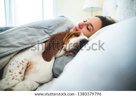 Girl and dog sleeping together comfortably and cuddled in bed in the morning. In bed with best friend brown and white basset hound dog with happy face to wake up next to your pet #1380379796