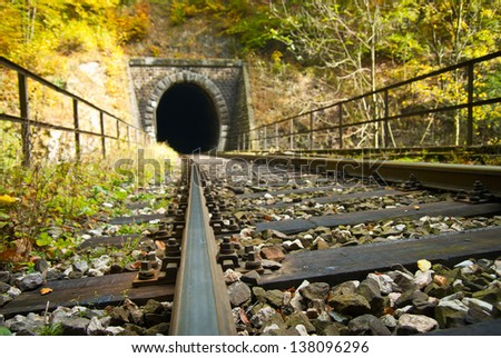 Old brick tunnel in the mountains in autumn/Train tunnel #138096296