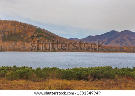 Bystra river, forest in autumn colors and mountains in the background. Peninsula Kamchatka, Russia. #1381549949
