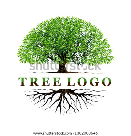 tree logo templates with circular shape, and name of the logo in the middle #1382008646