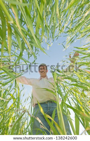 agricultural engineer  in the  wheat field #138242600