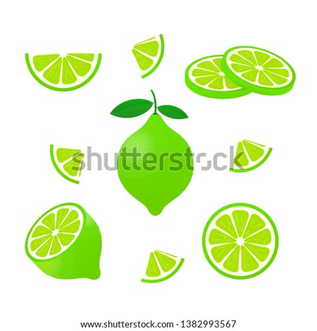 Lime with green leaves, slice citrus isolated on white background. Vector stock illustration. #1382993567