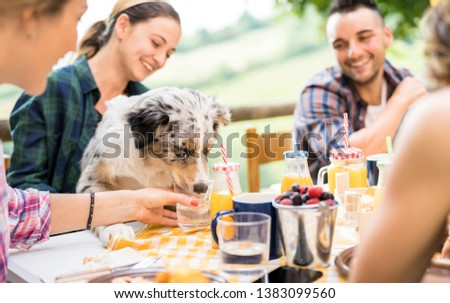 Young people at healthy pic nic breakfast with cute dog in countryside farm house - Happy friends millennials having fun together outdoors at garden party - Food and beverage lifestyle concept
