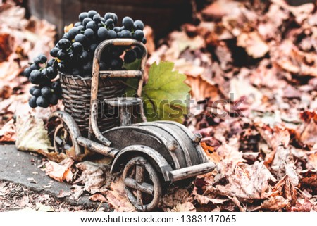 Autumn still life grapes in a wooden car on a background of autumn leaves