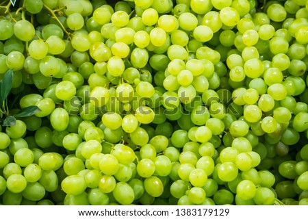 Fresh Fruit Brunch Green Grapes on Shelf in Fresh Fruit market Thailand Travel Background Concept #1383179129