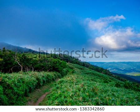 The view of the hill in the western part of Izu Peninsula, Shizuoka Prefecture, Japan, in a summer day. #1383342860