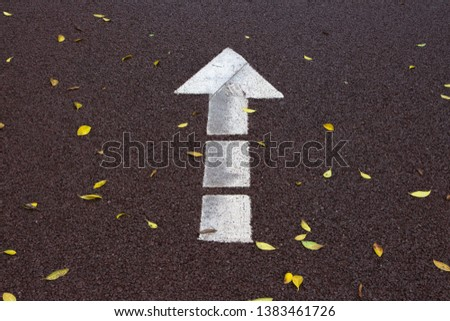 Fallen leaves and white arrow marks on red asphalt runway in autumn park #1383461726
