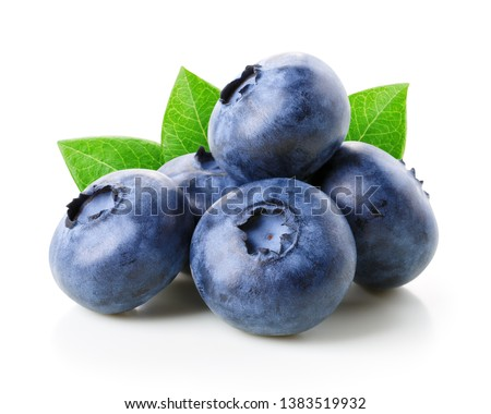 Blueberries with leaves isolated on white #1383519932