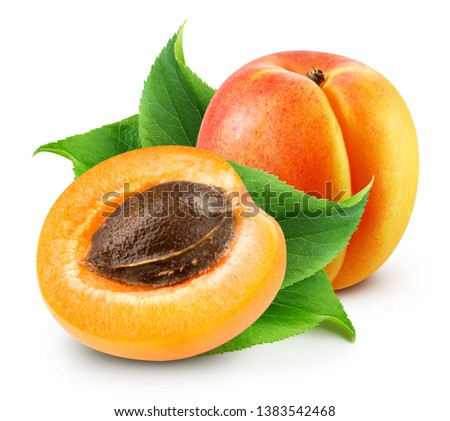 Apricot isolated on white background. Apricot Clipping Path. Fresh apricot fruits. Fresh half apricot fruits isolated on white background #1383542468