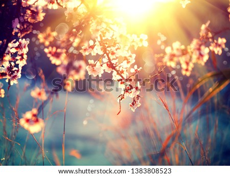 Beautiful nature scene with blooming tree and sun flare #1383808523