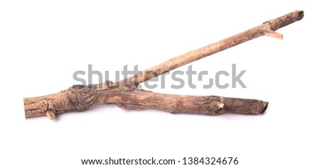 Twigs, Sticks and Branches Isolated on White  #1384324676
