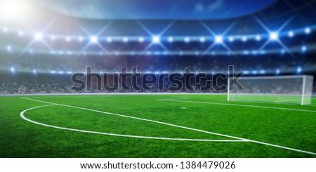 Soccer stadium with illumination, green grass and night  blurred sky #1384479026