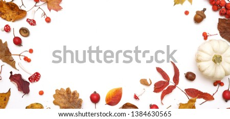 Autumn layout composition frame of dry leaves of twigs, pumpkin and berries on white background, Flat lay, top view, copy space, halloween concept. #1384630565