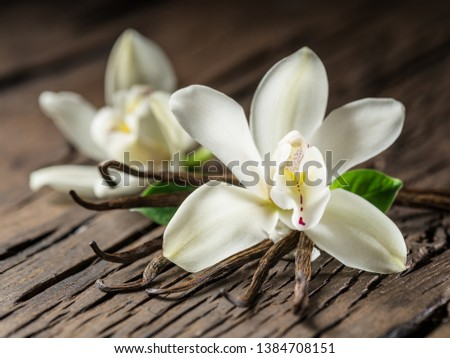 Dried vanilla sticks and vanilla orchid on wooden table. Close-up. #1384708151
