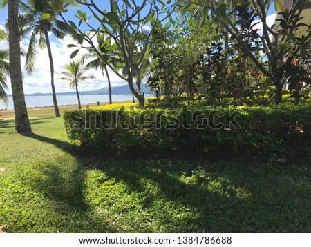 Lush green park with palm trees by water and bright blue sky  #1384786688