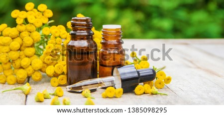 tansy medicinal extract, tincture, decoction, oil, in a small bottle nature #1385098295