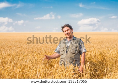 farmer standing in a wheat field, looking at the crop #138517055