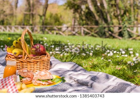 Lunch in the park on the green grass. Summer sunny day and picnic basket
