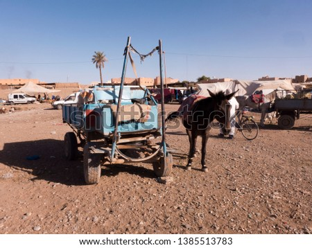 Horse or mule on a blue cart. It is market day in Morocco. #1385513783