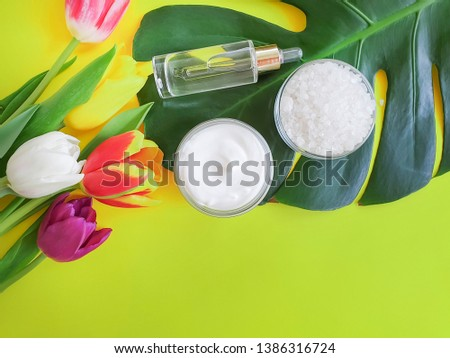 Cosmetic cream, extract, flower Tulip Monstera leaf on a colored background #1386316724