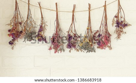 dried flowers hanging on the wall.It decoration wall of  living room  Royalty-Free Stock Photo #1386683918