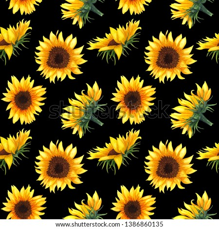 Seamless pattern with sunflowers on black background. Collection decorative floral design elements. Flowers, buds and leaf hand drawn with watercolor.