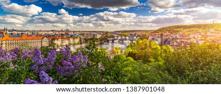 Amazing spring cityscape, Vltava river and old city center with colorful lilac blooming in Letna park, Prague, Czechia. Blooming bush of lilac against Vltava river and Charles bridge, Prague, Czechia. #1387901048