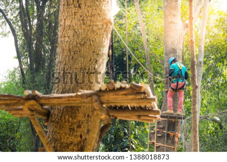 Backside of man on tree with helmet and belt cabinet ,outdoor activity sport #1388018873