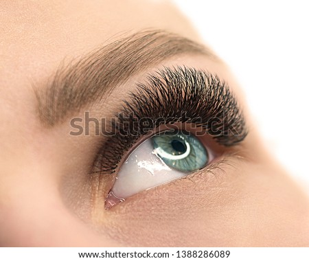 Beautiful female open blue eye with eyelash extension. Close up, selective focus, isolated on white. Beauty service and products, fashion, make up, cosmetic, medicine, laser surgery, eyesight, vision Royalty-Free Stock Photo #1388286089