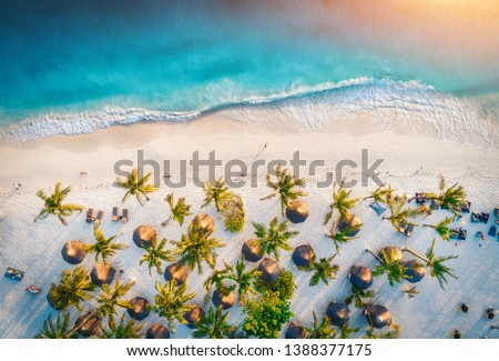 Aerial view of umbrellas, palms on the sandy beach of Indian Ocean at sunset. Summer holiday in Zanzibar, Africa. Tropical landscape with palm trees, parasols, white sand, blue water, waves. Top view #1388377175