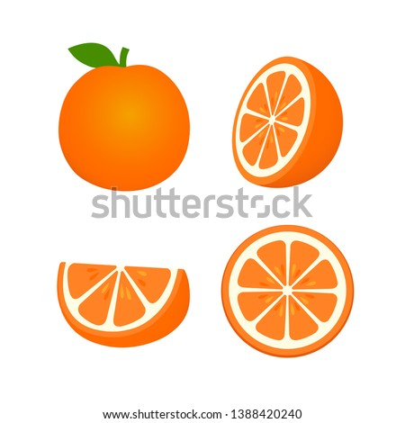 Collection of whole, cut half, slice, piece Tangerine with leaf, fruit pattern vector illustration sketch isolated on white background #1388420240