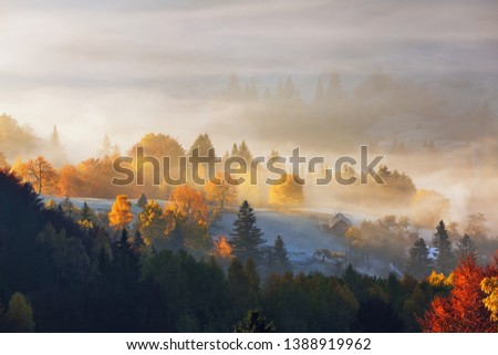 The lawn is enlightened by the sun rays. Majestic autumn rural landscape. Fantastic scenery with morning fog. Green meadows in frost. Picturesque resort Carpathians valley, Ukraine, Europe. #1388919962