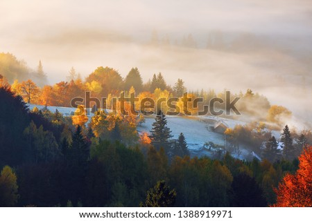 The lawn is enlightened by the sun rays. Majestic autumn rural landscape. Fantastic scenery with morning fog. Green meadows in frost. Picturesque resort Carpathians valley, Ukraine, Europe. #1388919971