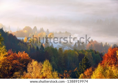 The lawn is enlightened by the sun rays. Majestic autumn rural landscape. Fantastic scenery with morning fog. Green meadows in frost. Picturesque resort Carpathians valley, Ukraine, Europe. #1388919974