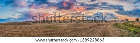 Panoramic view of the hills and fields after mowing the grain during the summer sunset. Warmia and Masuria. Poland Royalty-Free Stock Photo #1389228863