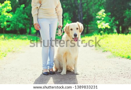 Woman owner walking with her Golden Retriever dog on leash in summer day #1389833231