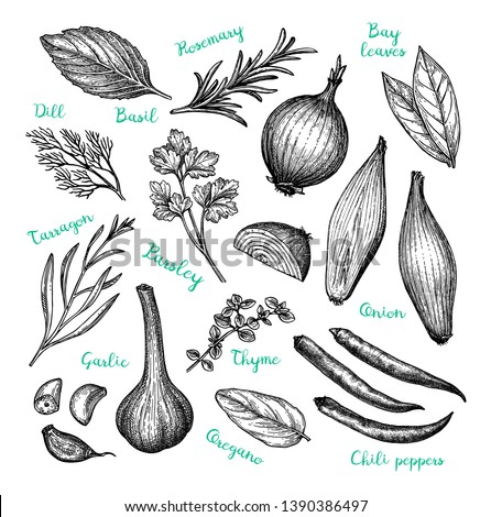 Cooking ingredients. Ink sketch isolated on white background. Hand drawn vector illustration. Retro style.  #1390386497