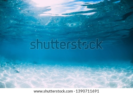 Tropical blue ocean with white sand underwater in Hawaii #1390711691