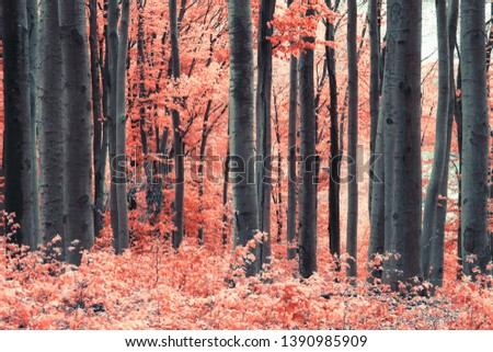 surreal infrared forest landscape with pink leaves