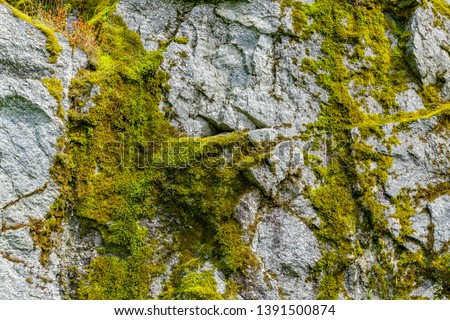 Moss on a rock face. Relief and texture of stone with patterns and moss. Stone natural background. Stone with Moss. Stones boulders covered with moss. #1391500874