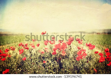 panoramic vintage landscape with red flower in spring field #139196741