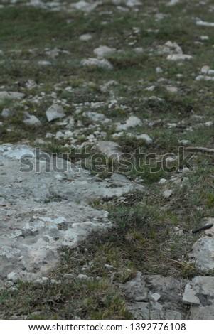 stones on the coast in Crimea #1392776108